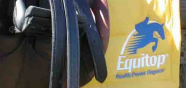 Equitopteaser